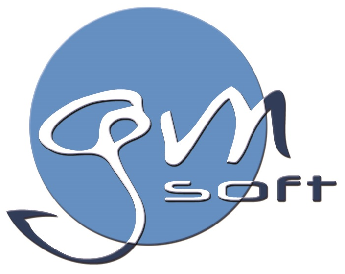 GM Soft | Software Engineering, Digital Forensics